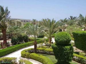 Club Azur Resort 4*, Красное море, Макади Бей, Египет, Makadi Bay, отзыв, отель, пальмы