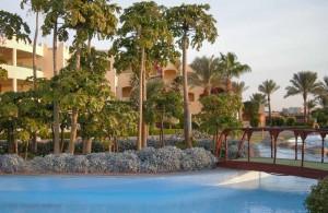 отель Тиа Хайтс, бассейн, Макади Бей, Египет