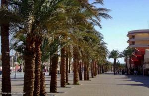 Hurgada, пальмы, курорт, Арабская Республика Египет