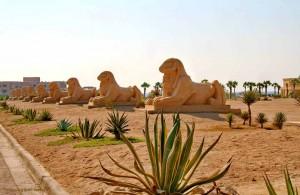 отель Шератон Сома Бей Ресорт, побережье Хургады, Soma Bay, Egypt, Красное море