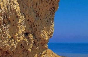 берег, окаменевшие кораллы, Красное море, Red Sea, Египет, АРЕ, Миср, Egypt