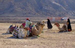 Синайский полуостров, Egypt, обстановка в Египте