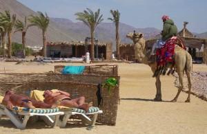 hotel Radisson Sas, курорт Таба, Египет, Синай, Акабский залив, Egypt