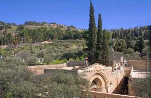 Гефсимания, Иерусалим, христианство, туризм, путешествия, достопримечательности, Izrail