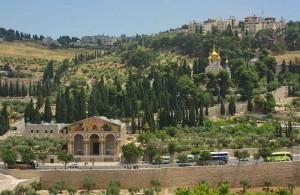 Масленичная гора, Гефсимания, Иерусалим, христианство, туризм, Izrail, путешествия, достопримечательности