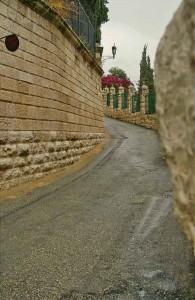 Гефсиманский сад, спуск с Масличной горы, Израиль, религия, Ierusalim, экскурсии
