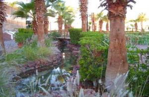 Дримс Бич Ресорт 5, отзыв, отдых в Египте, отель, 5 звезд, территория, речка, Шарм эль Шейх