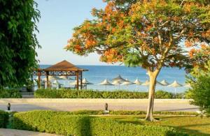 мороженое на пляже, фрешбар, отель Melia Sinai 5*, Шарм Эль Шейх, отдых в Египте, всё включено, Egypt
