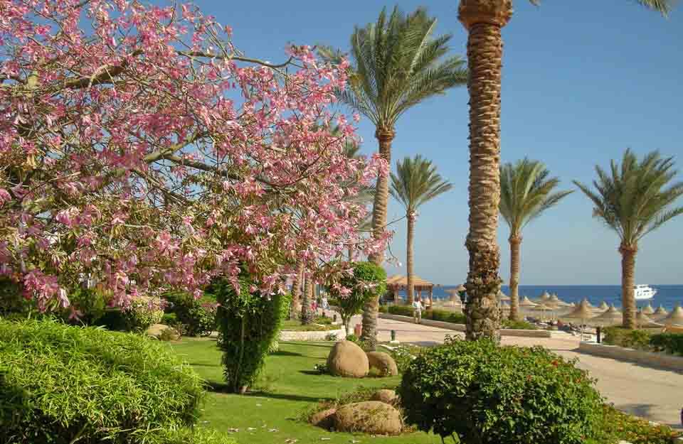 ровный рельеф, отель Мелиа Синай, отзыв об отдыхе, курорт Шарм, Египет, впечатления, променад вдоль пляжа
