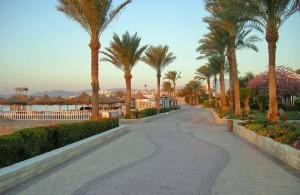 пешеходная дорожка, отель Мелиа Синай, рассвет, отзыв об отдыхе, курорт Шарм, Египет, впечатления