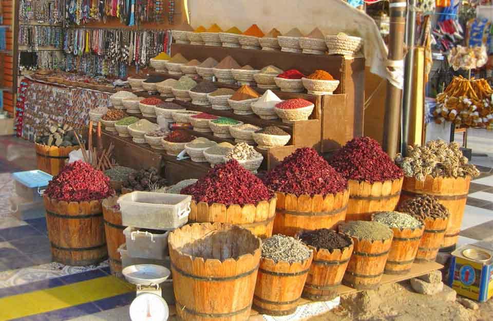 Каркаде, китайская роза, Hibiscus sabdariffa, розелла, красный щавель, roselle, сhina rose, sour tea, sudanese tea