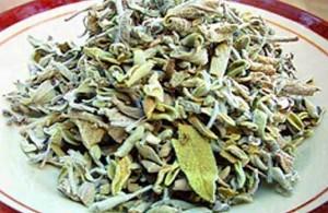 Бедуинский чай, произрастает только на Синайском полуострове, сладкий чай из мармареи, традиционный бедуинский напиток, лечебные свойства