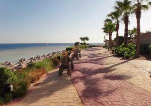 пешеходная дорожка, отель Мелиа Синай, отзыв об отдыхе, курорт Шарм, Египет, Шарм Эль Шейх, отдых в Египте, Egypt, впечатления