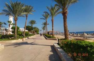 отель Мелиа Синай, впечатления об отдыхе, курорт Шарм, Египет, отзыв