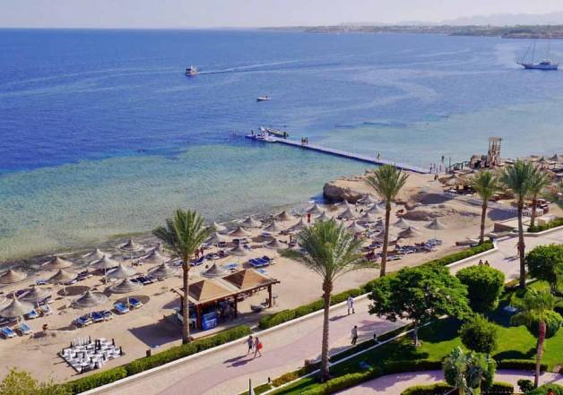 Туроператор и гид. Грустная заметка отдыхающего в Египте первый раз