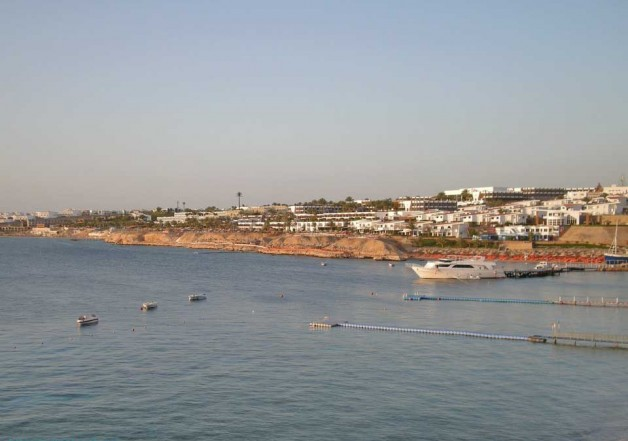 «Sea Magic Resort Spa 5*». (Pyramisa). Шарм. Отзыв об отеле