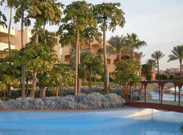 Что нужно знать об отдыхе в Египте. Весна и погода